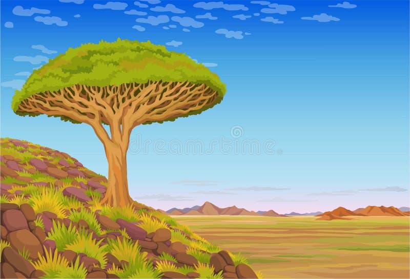 Animationslandschaft: ein Drachenblutbaum auf dem Hügel, das afrikanische Tal, Berge, der bewölkte Himmel stock abbildung