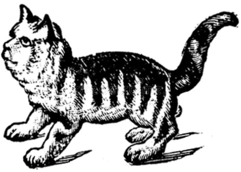 Animaux-005-td Free Public Domain Cc0 Image