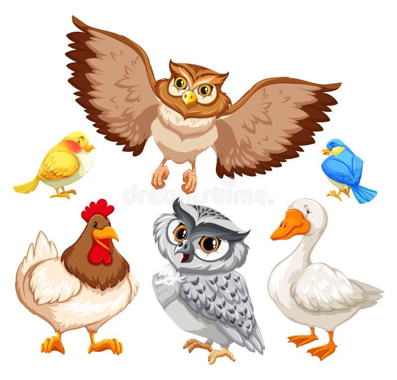 animaux illustration stock