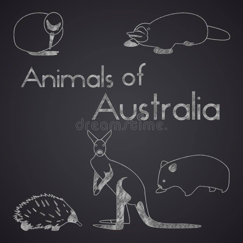 Animaux d'Australie sur le tableau Partie 1 illustration de vecteur