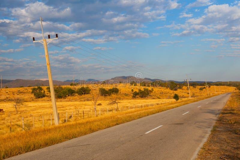 Animaux de ferme sur le pâturage sur la campagne du Trinidad, Cuba image stock