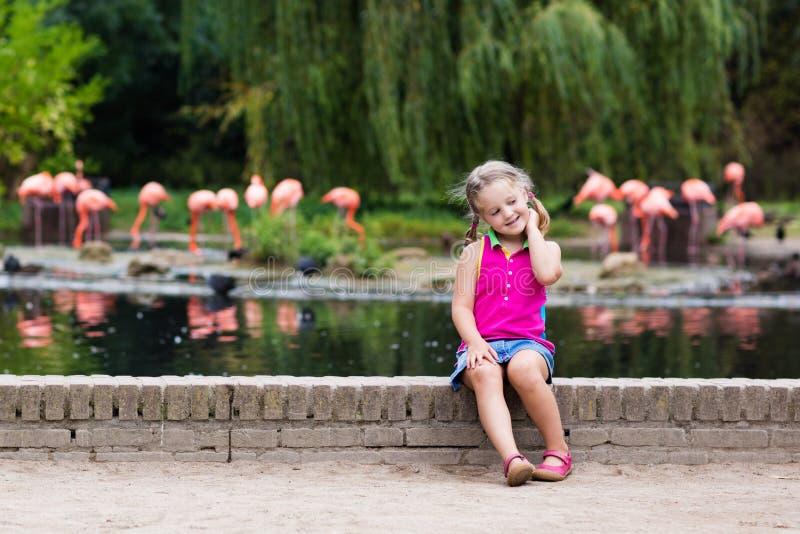 Animaux et oiseaux de observation d'enfant au zoo photographie stock