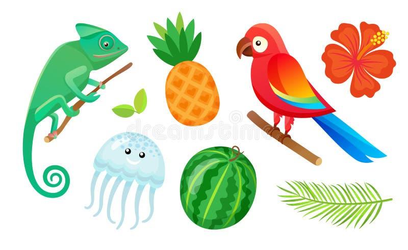 Animaux, fruits et plantes exotiques, vacances d'été illustration stock