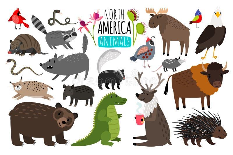 Animaux nord-américains Graphiques animaux de l'Amérique du Nord, bison et mouffette américaine, orignaux mignons et lynx illustration libre de droits