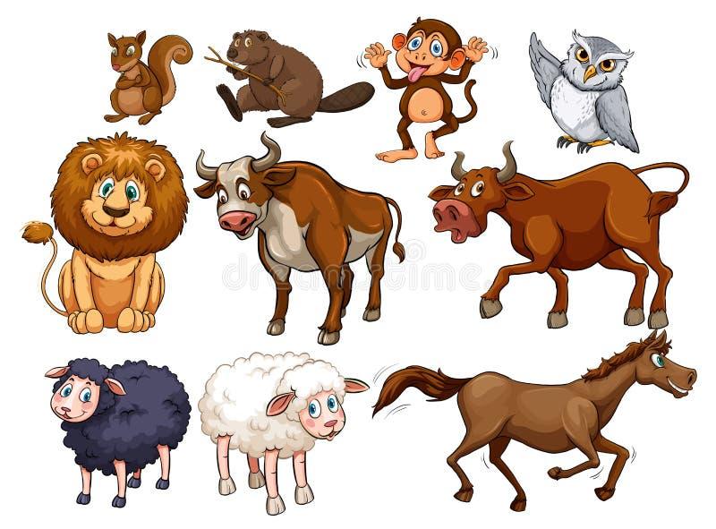 Animaux sauvages dans divers types illustration de vecteur