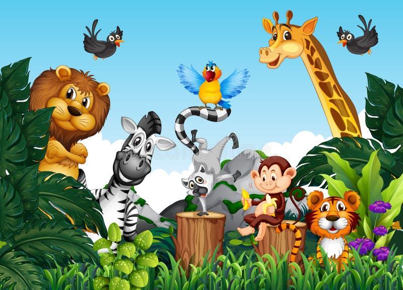 Animaux sauvages dans la jungle illustration stock