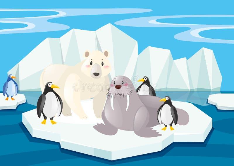 Animaux sauvages dans le Pôle Nord illustration de vecteur