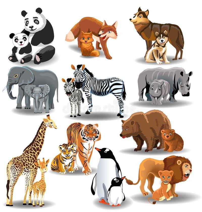 Animaux sauvages et leurs bébés illustration stock