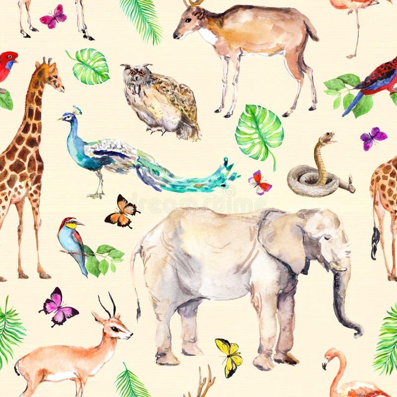 Animaux sauvages et oiseaux - zoo, faune - éléphant, girafe, cerf commun, hibou, perroquet, autre Configuration sans joint waterc illustration stock
