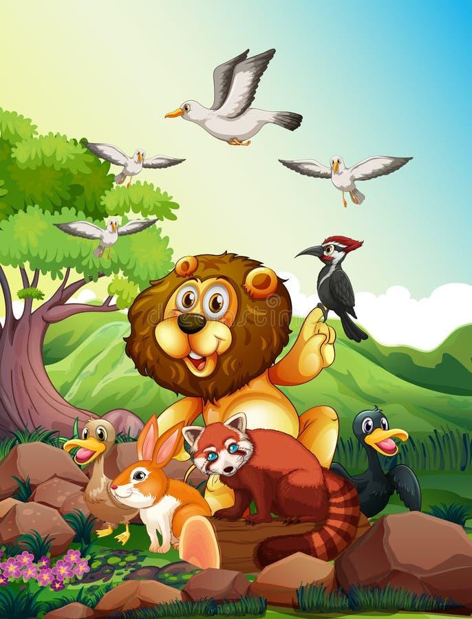Animaux sauvages vivant dans la forêt illustration libre de droits