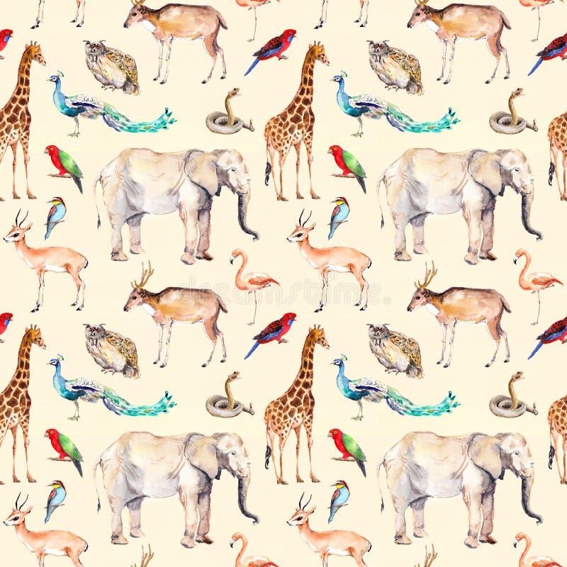 Animaux sauvages - zoo, faune Configuration sans joint watercolor illustration libre de droits