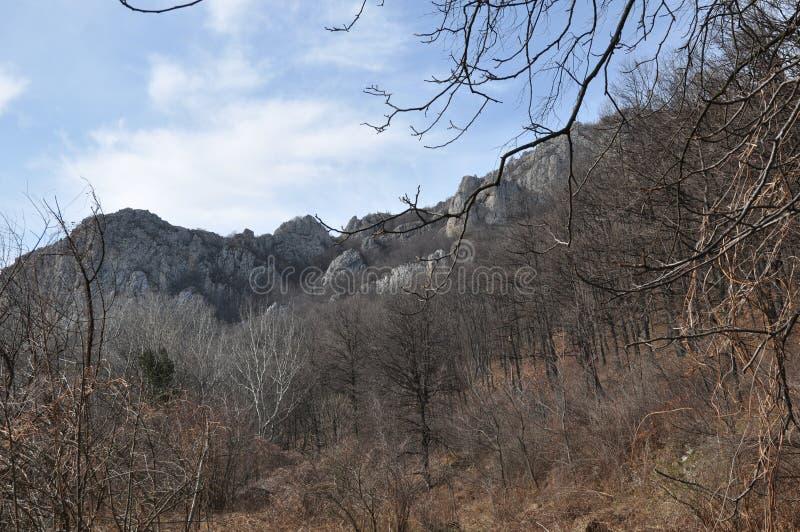 Anina Mountain royaltyfria foton