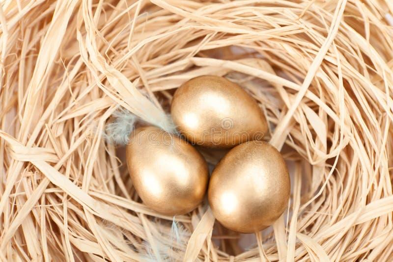 Aninhe com os ovos de codorniz dourados imagem de stock