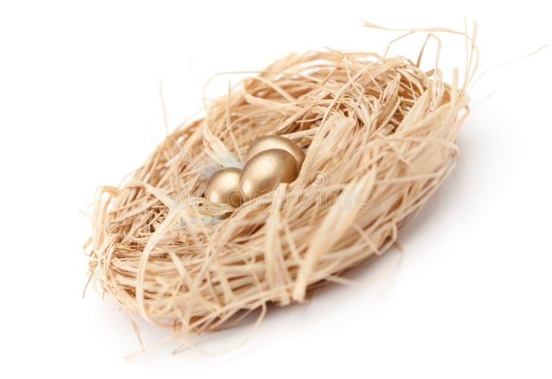 Aninhe com os ovos de codorniz dourados fotos de stock royalty free