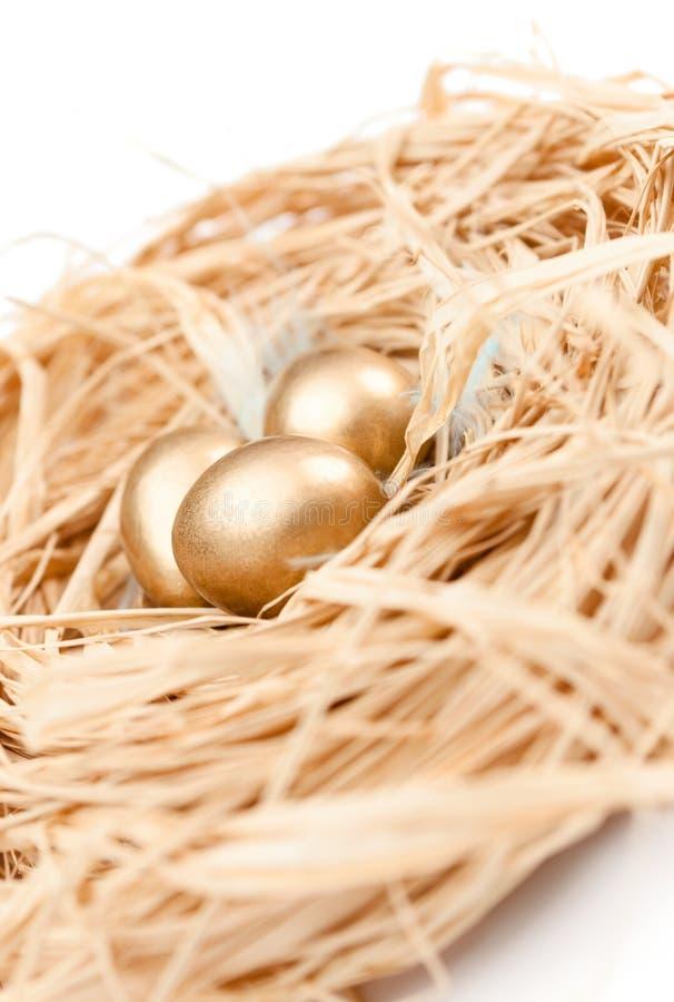 Aninhe com os ovos de codorniz minúsculos dourados imagens de stock