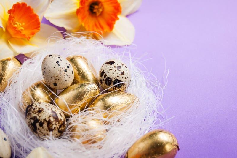Aninhe com ovos e narcisos amarelos em um fundo azul easter foto de stock royalty free