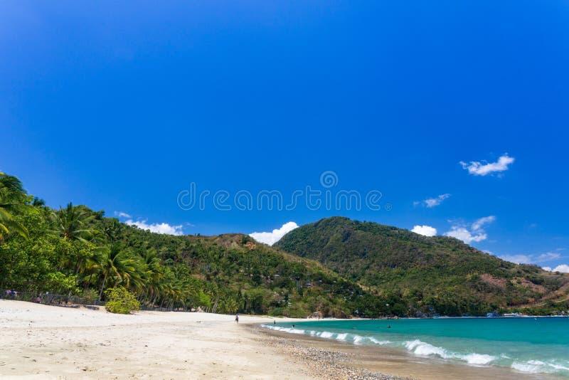 Aninuan wyrzucać na brzeg, Puerto Galera, Orientalny Mindoro w piasku, kokosowych drzewach i turkus wodach Filipińskim, białym, k fotografia royalty free