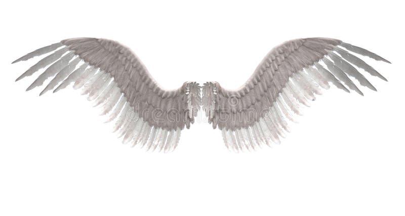 Aniołów skrzydła ilustracji
