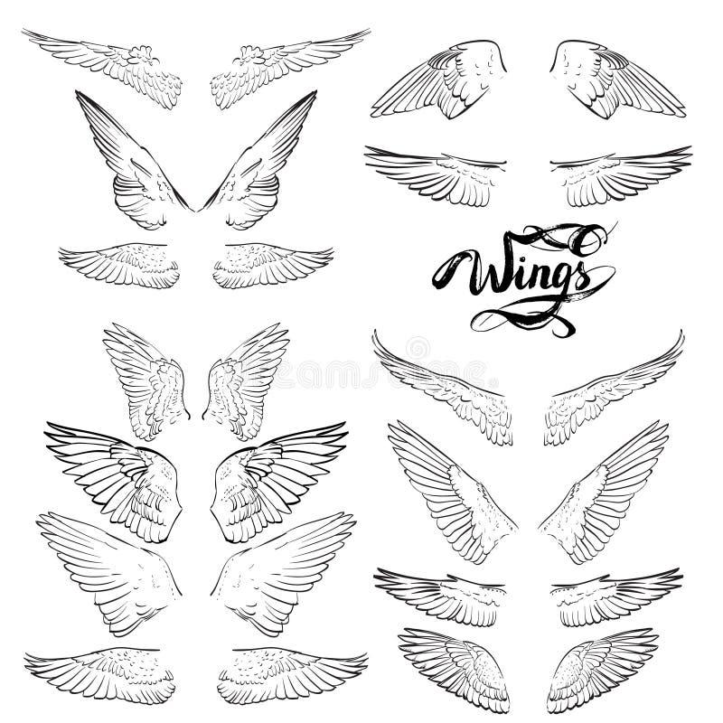aniołów skrzydła, literowanie, rysunkowy wektor ilustracji