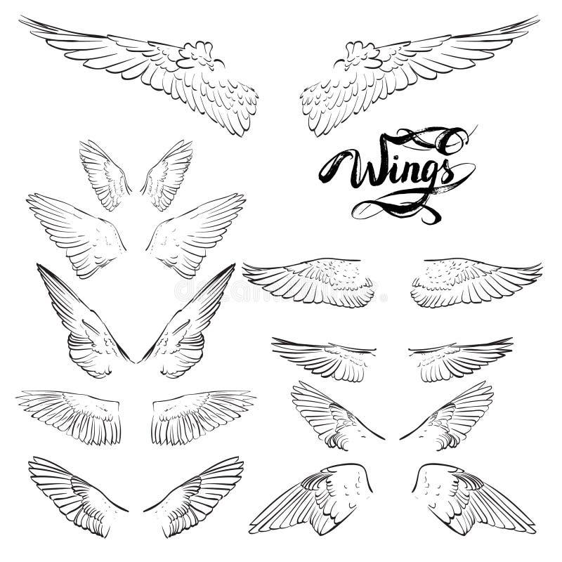 aniołów skrzydła, literowanie, rysunkowy wektor royalty ilustracja