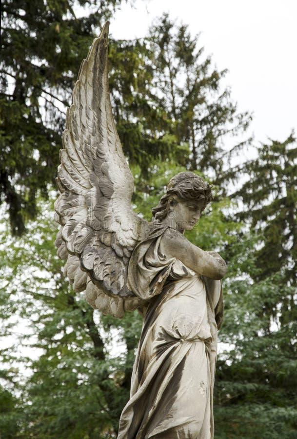 Anioł kobiety stara rzeźba przy grób Lychakovsky cmentarz, Lviv zdjęcie stock