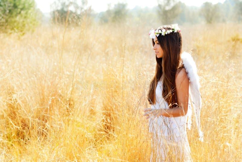 anioła śródpolnej dziewczyny złoci biały skrzydła zdjęcia stock