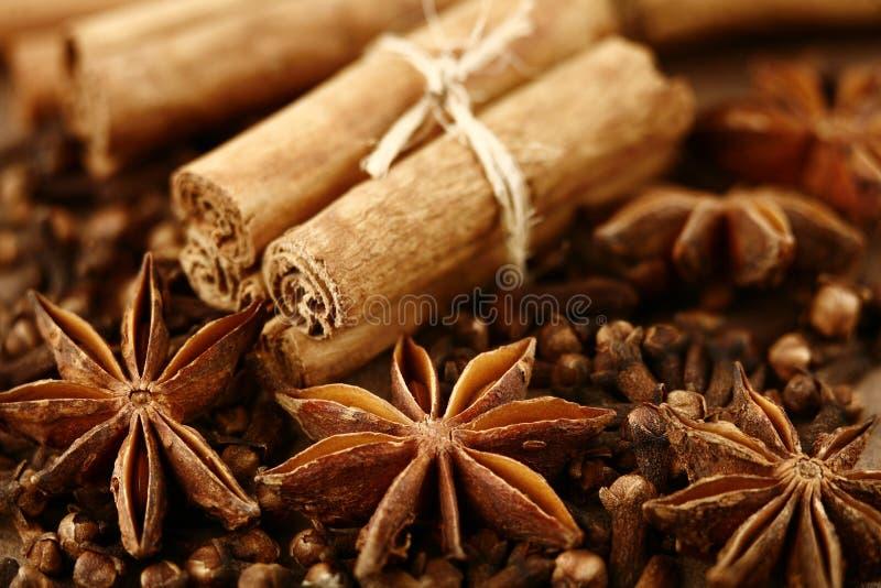 Anis, canela e cravos-da-índia de estrela foto de stock