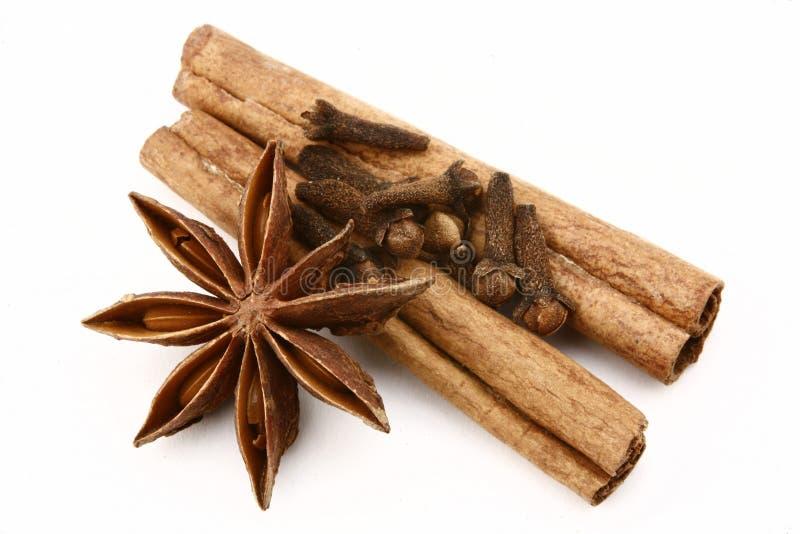 Anis, canela e cravos-da-índia de estrela em um fundo branco imagens de stock royalty free
