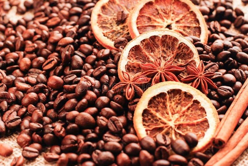 Anis, canela e laranja secada em feijões de café dispersados imagem de stock