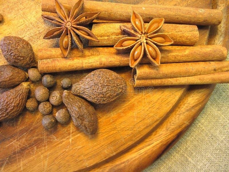 Anis and cinnamon royalty free stock photos