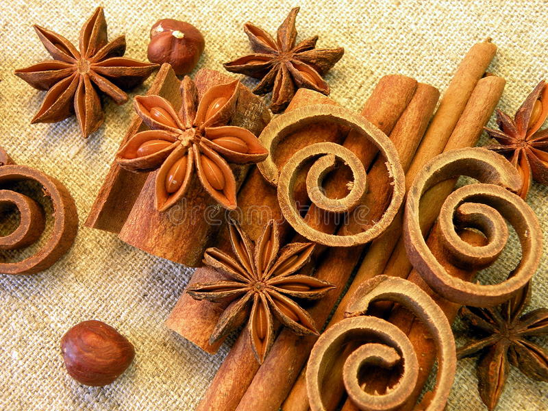 Anis and cinnamon royalty free stock images