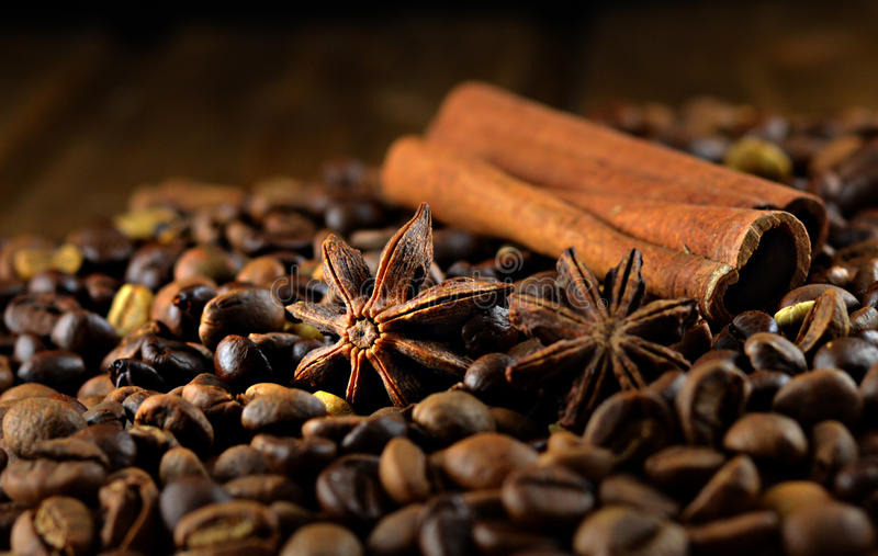 Anis, coffee and cinnamon. On dark background stock photography