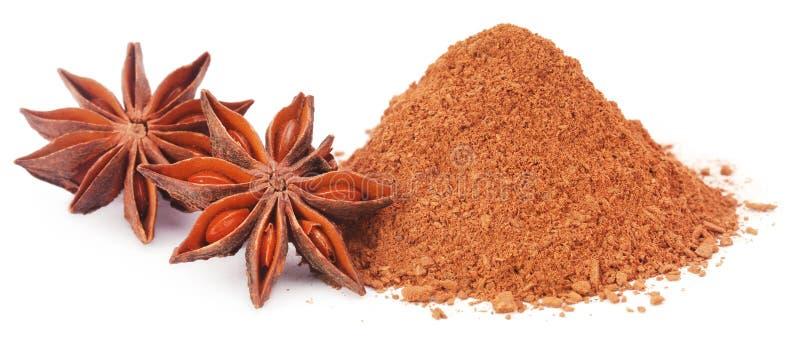 Anis d'étoile aromatique avec l'épice moulue photo libre de droits