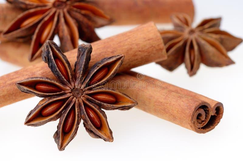 Anis d'étoile avec des bâtons de cannelle images libres de droits