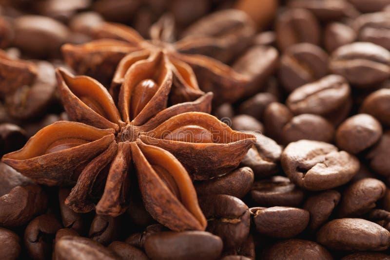 Anis d'étoile avec le tir de macro de plan rapproché de grains de café photo stock