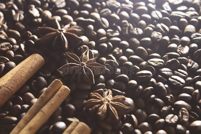 Anis d'étoile et bâtons de cannelle sur les grains de café rôtis photo stock