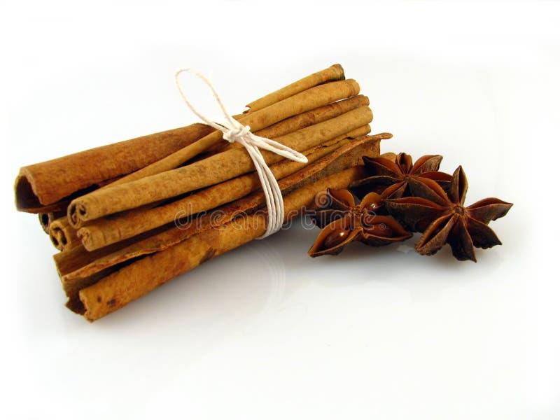 Anise & Cinnamon Stock Photos