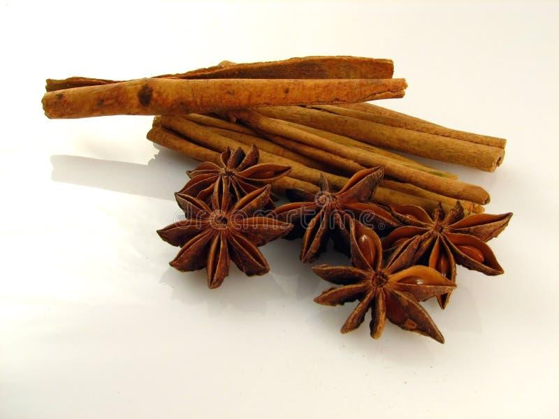 Anise & Cinnamon Stock Photo