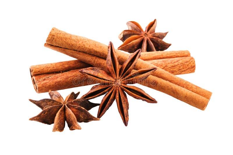 Anise Cinnamon Sticks Closeup royaltyfri fotografi