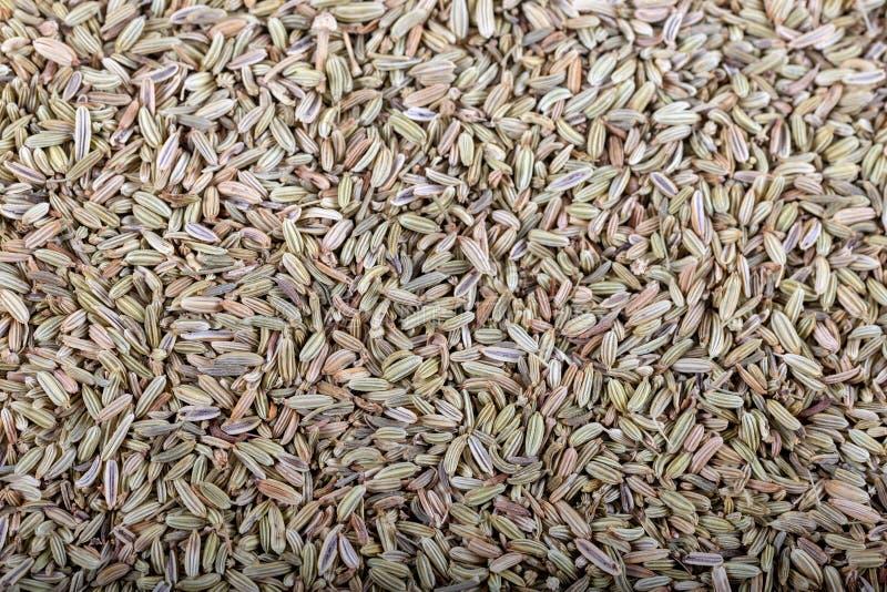 Anise Seed o an?s secada como como fondo imágenes de archivo libres de regalías