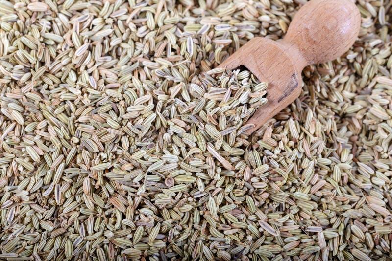 Anise Seed ou anis secado como como o fundo fotografia de stock
