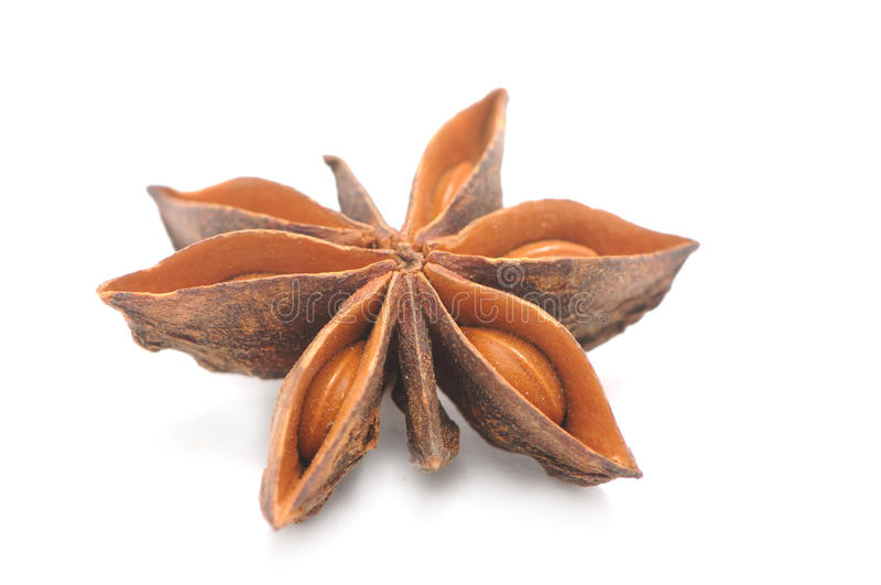 Anise Star Close-up royalty free stock image