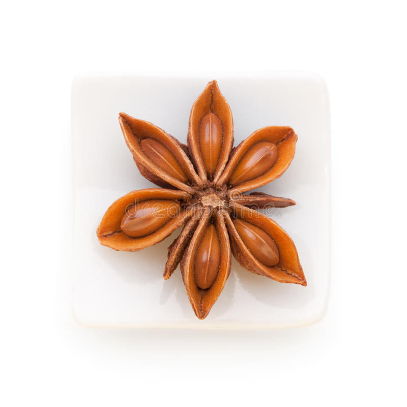 Anise star in a white bowl on white background royalty free stock photo