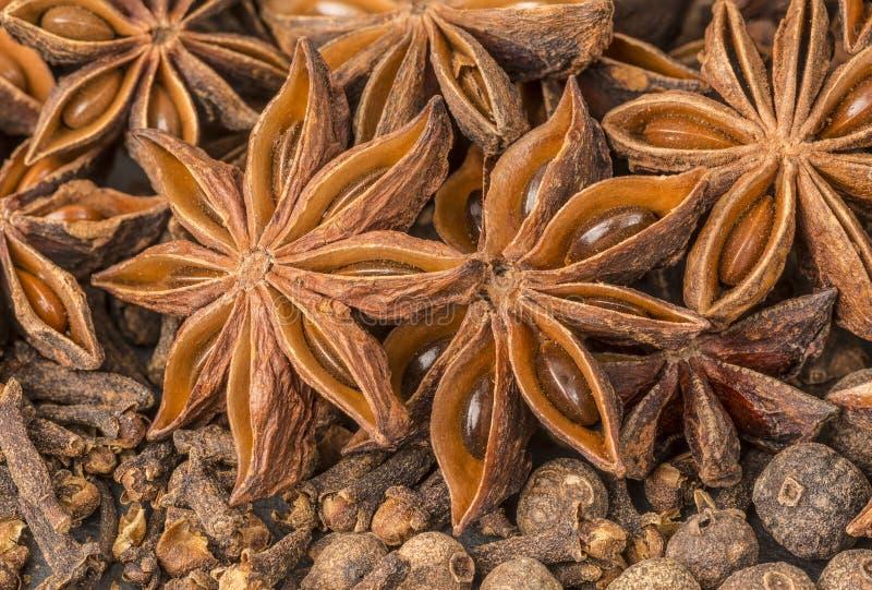 Anisstjärna-, kryddnejlika-, kryddpeppar- och kanelSicks arkivbild