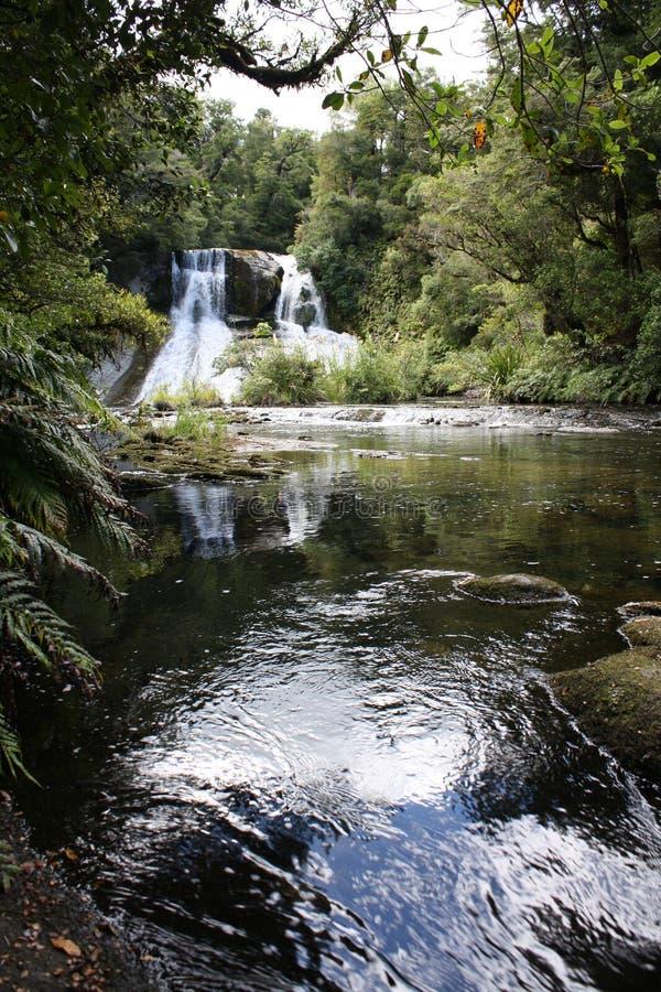 Aniwaniwa Wasser-Fälle - See Waikaremoana stockbilder