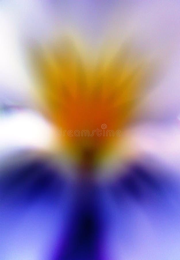 Anjo abstrato como a viola da flor tricolor ilustração royalty free