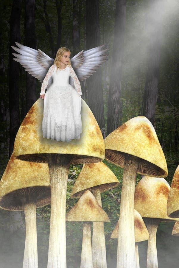 Anjo da moça, floresta mágica, madeiras, cogumelos foto de stock royalty free