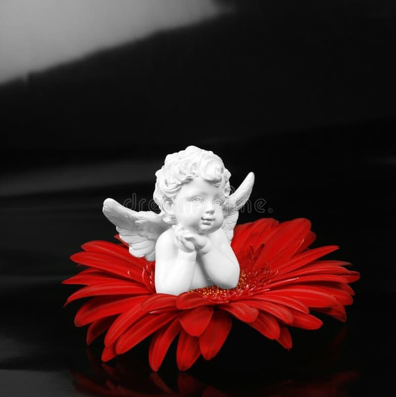 Anjo e uma flor imagens de stock