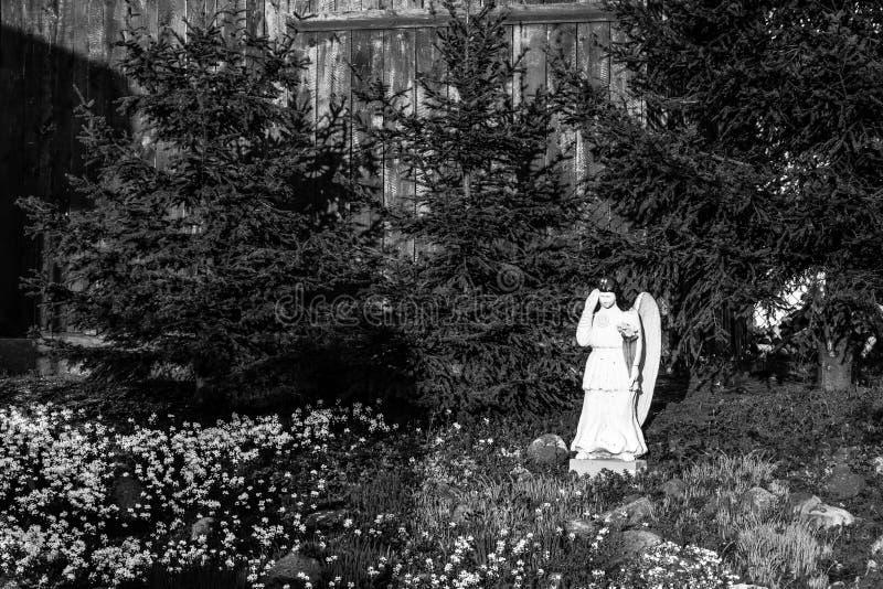 Anjo em meu jardim fotografia de stock royalty free