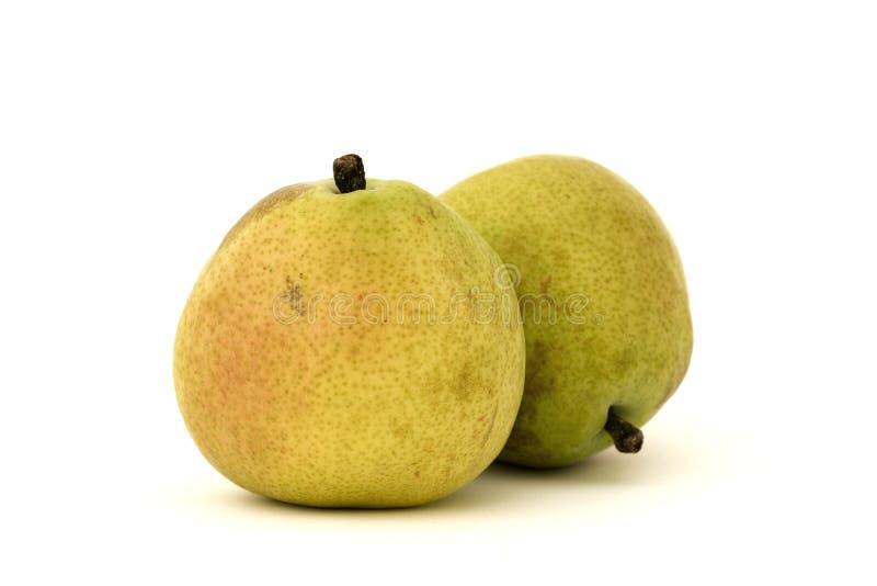 anjou D isolerade pears arkivbilder
